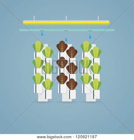 Hydroponic Farm Illustration