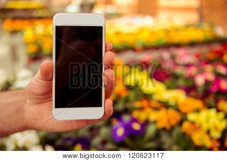 Gadget And Flowers