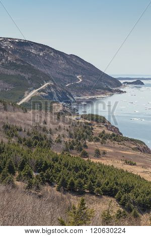 Winding Road At Cabot Trail Vertical