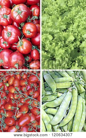 Set Of Backgrounds Of Many Of Juicy Ripe Red Tomatoes, Plurality Of Pods Of Green Peas And A Vegetab