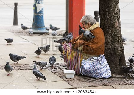 Homeless Begging Woman Pigeons