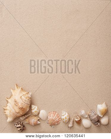Sand with shells
