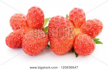 Two Red Strawberries.