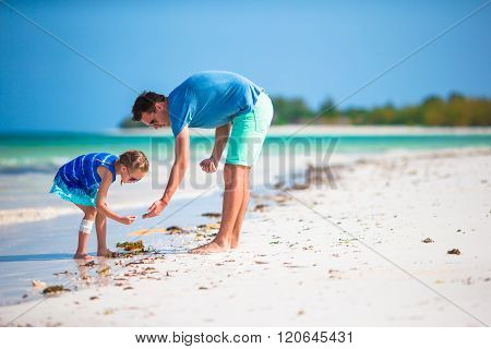 Happy father and his adorable little daughter at tropical beach collecting seashells