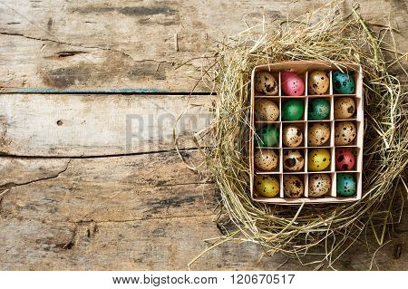 Easter Wood Background With Brushed Eggs In Nest