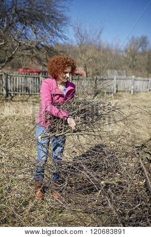 Cleaning The Orchard