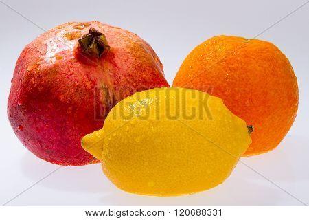 Orange Pomegranate Lemon Isolated