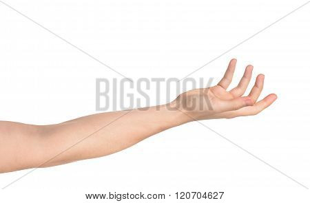 Outstretched Hand Isolated On White Background