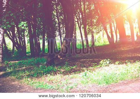 Spring City Park