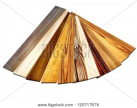 New oak parquet of different colors. Isolated on white background