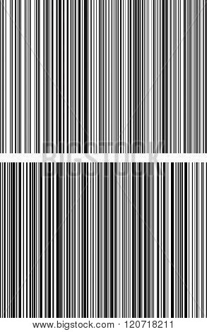 Pair Of Straight, Parallel Black And White Lines From Thick To Thin To Down. Vertical Repetitive Lin
