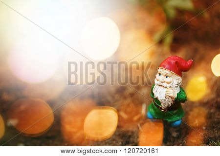 Toy Garden Gnome In Sun Light