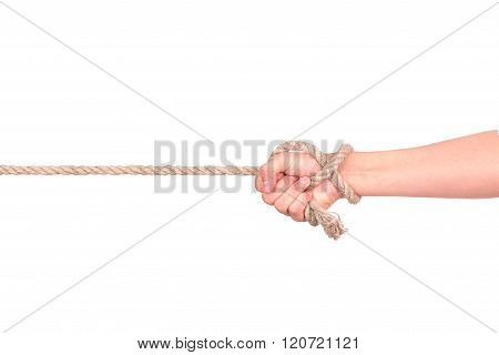 Close Up Of Hand Pulling A Rope On White Background With Clipping Path