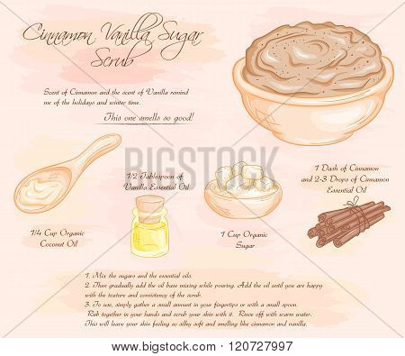 Vector Hand Drawn Illustration Of  Cinnamon Vanilla Sugar Scrub Recipe