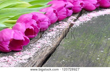 Tulips And Scattered Deco On Wood