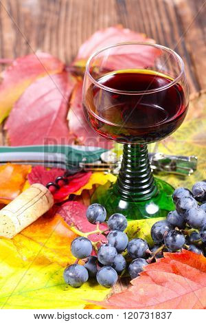 Red Wine And Corkscrew