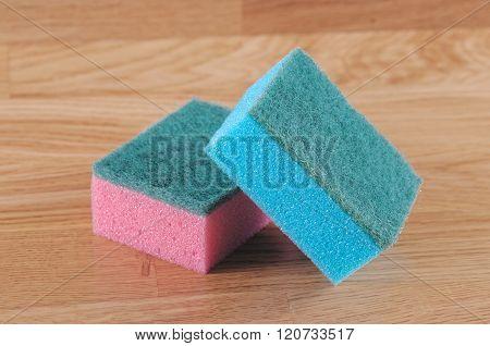 Pair of sponge