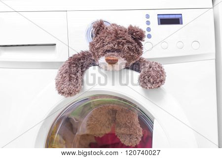 Teddy bear in a washing machine.