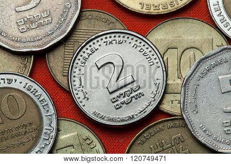 Coins of Israel. Israeli two new shekels coin.