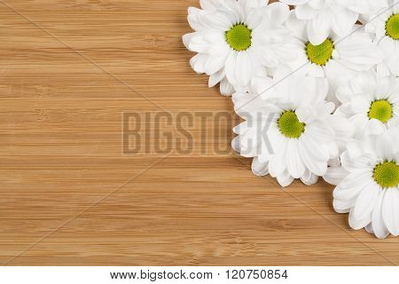 white flower on the brown wood wall