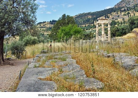 Athena Pronaia Sanctuary in Ancient Greek archaeological site of Delphi, Greece