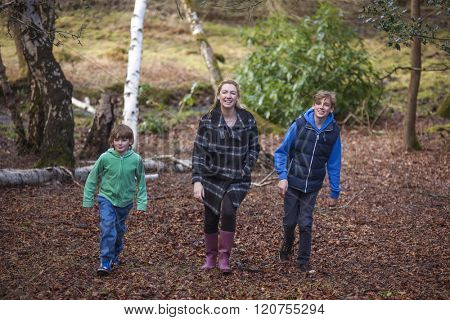 Woman and male children, mother and two sons family walking in trees of woods or forest