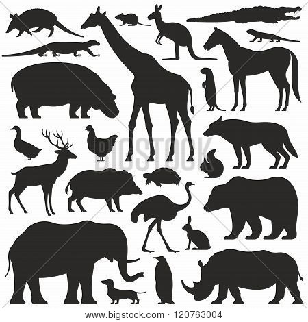 Animals silhouette set