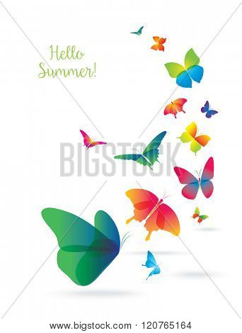 Colorful Butterflies Isolated on White Background. Summer and Spring Banner.
