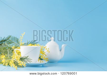 Spring Tea Drinking With Yellow Mimosa
