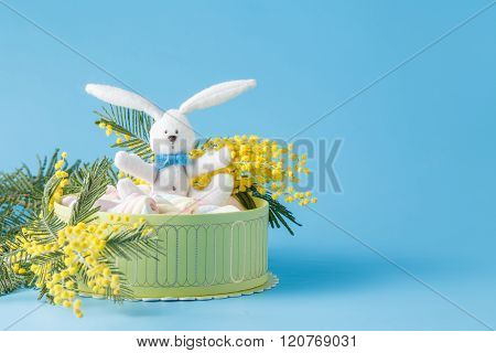 Present Box With Twisted Marshmallow And Eater Bunny