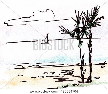 Sea With Palm-trees