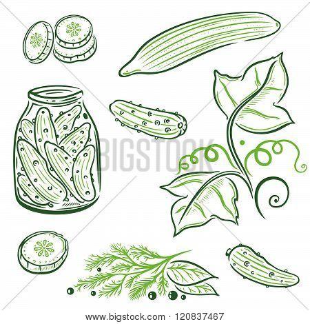 Vegetables, cucumbers