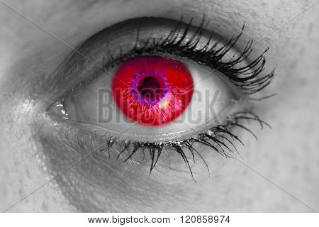 Eye With Red Iris Looks At Viewer Concept Macro