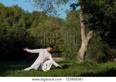 Man Practicing Tai-chi Outdoors In The Park