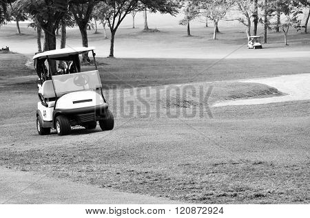 Golf Buggy Car At The Green In Black And White