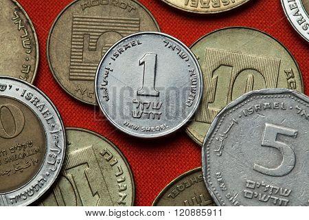 Coins of Israel. Israeli one new shekels coin.