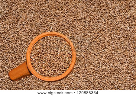 Buckwheat in a bowl on the background of buckwheat