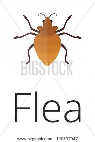 Skin vermin flea vector illustration. Skin vermin flea isolated on white background. Skin vermin flea vector icon illustration. Skin vermin flea isolated vector. Skin vermin flea silhouette