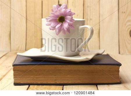 Tender Pink Chrysanthemum In White Cup, On Old Book