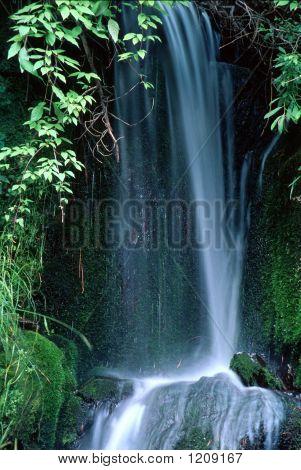 Kp Falls 033025A