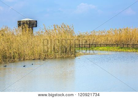Wooden round tower for bird watching. Hula Nature Reserve, Israel, December. Lake Hula is a wintering place for migratory birds