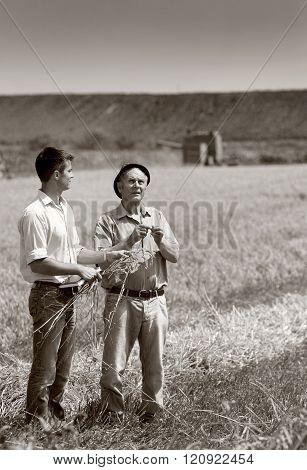 Farmers On Harvest
