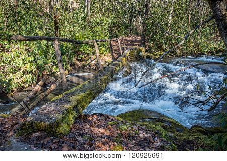 Simple Log Bridge Over Fast Moving Creek