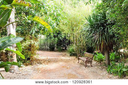 Meditation Bench in Botanical Garden