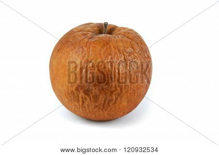 close up on single rotten apple on white background