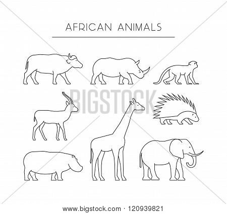 Vector line set of african animals. Linear silhouettes african animals isolated on a white background. Outline icons african animals.