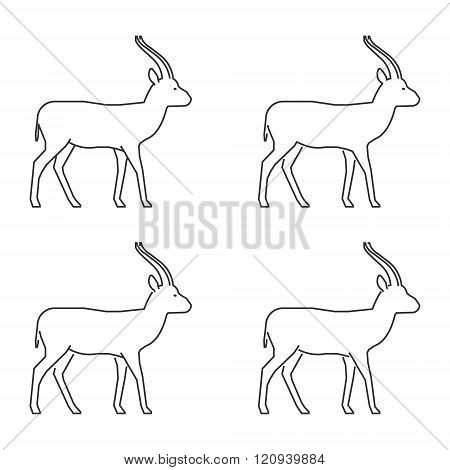 Outline gazelle on a white background. Vector silhouette gazelle. Modern gazelle icon. Vector line set of springbok.