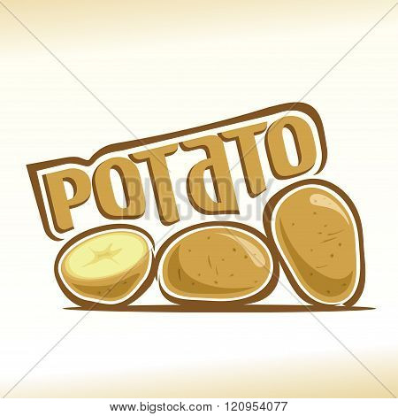 Vector illustration on the theme of potato