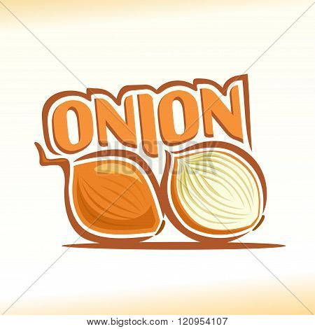 Vector illustration on the theme of onion