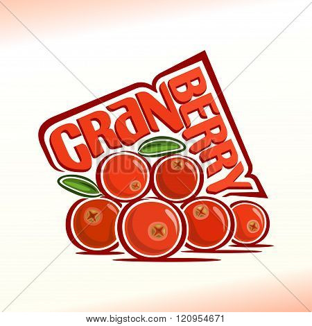 Vector illustration on the theme of cranberry